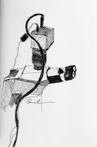 Digital Microscope ink on paper 2016 by Julianna Paradisi