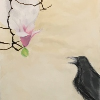 Random Thoughts of Crows, Butterflies and Transformation